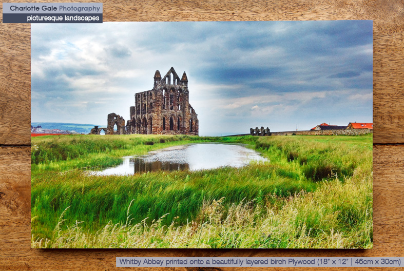 Whitby Abbey on Plywood