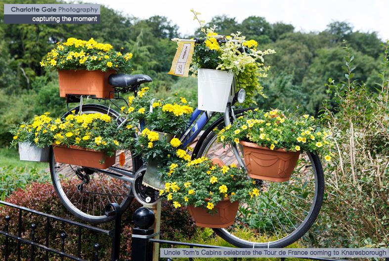 Yellow bike Knaresborough