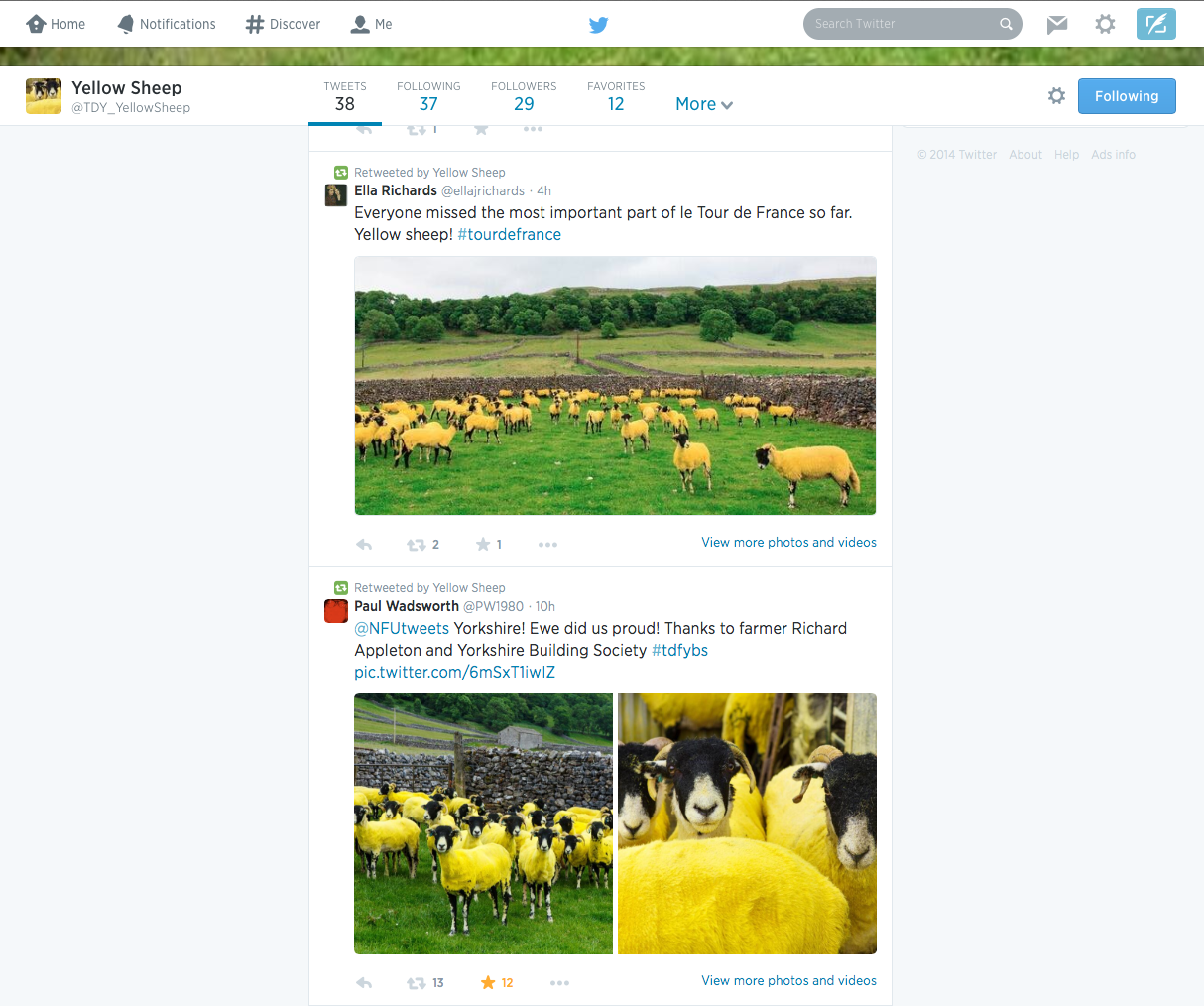 Yellow Sheep Twitter