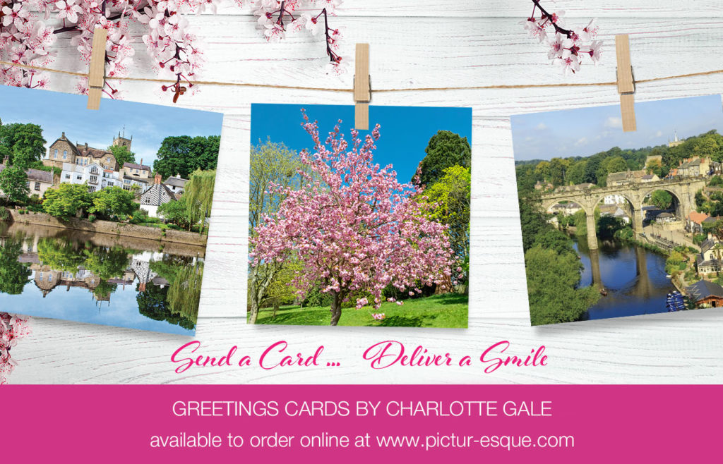Greetings cards by Charlotte Gale