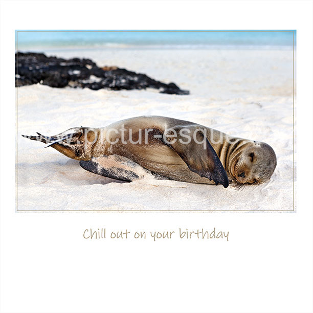 Sea Lion Birthday